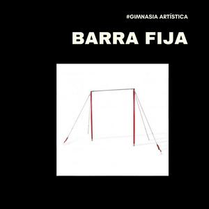 Barra fíja gimnasia artística masculina